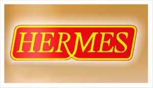 Imagem ilustrativa sobre como ser uma revendedora da Hermes.